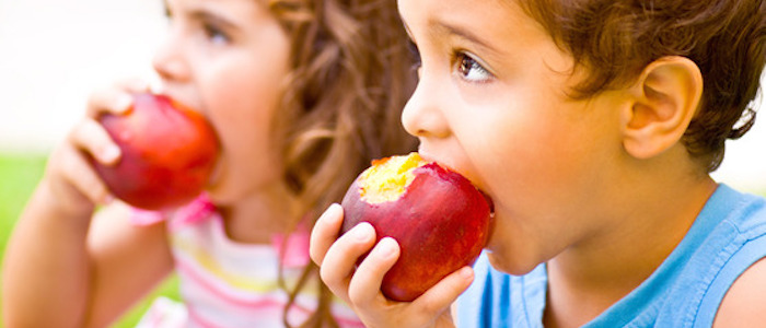 Nutrition Therapy - Youth Nutrition